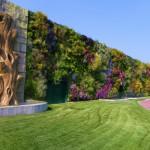 Профессиональные вертикальные зеленые стены