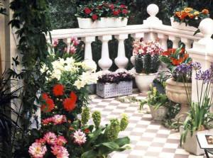 Цветы на балконе - это красота