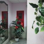 украшение подъезда цветами