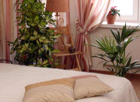 Цветы в спальне
