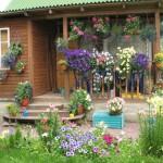 Подвесные цветочные комплексы